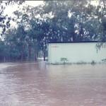 1991 FLOOD 9.3 HEIGHT